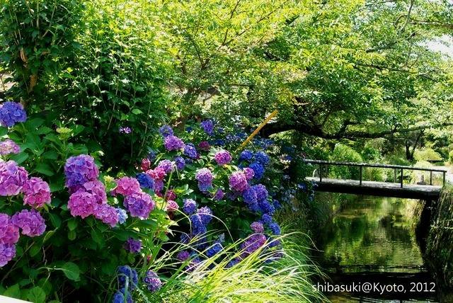 20120629_Kyoto-11_哲學之道_1.JPG
