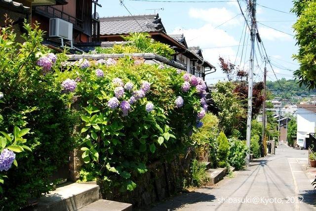 20120629_Kyoto-19_哲學之道_1.JPG