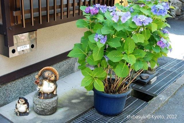 20120629_Kyoto-40_哲學之道_1.JPG