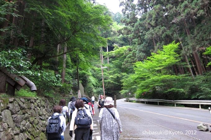 20120630_Kyoto-11_善峰寺_1.JPG