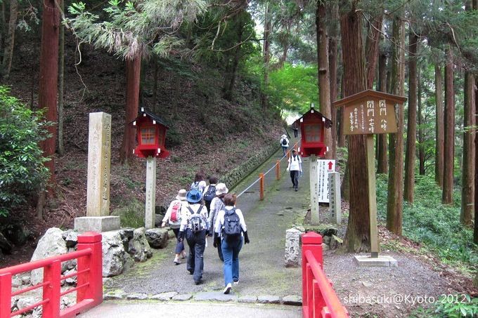 20120630_Kyoto-12_善峰寺_1.JPG