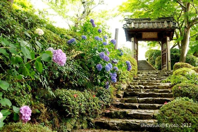 20120630_Kyoto-42_善峰寺_1.JPG