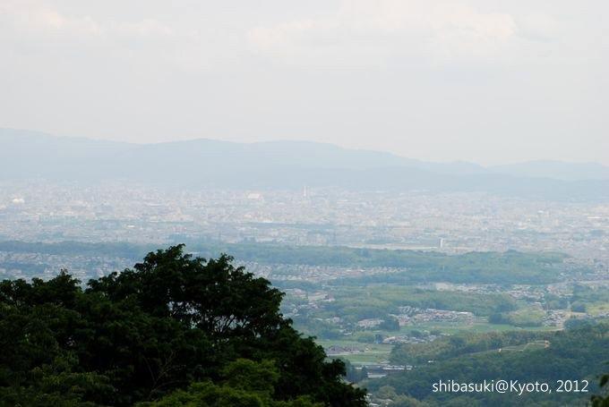 20120630_Kyoto-46_善峰寺_1.JPG