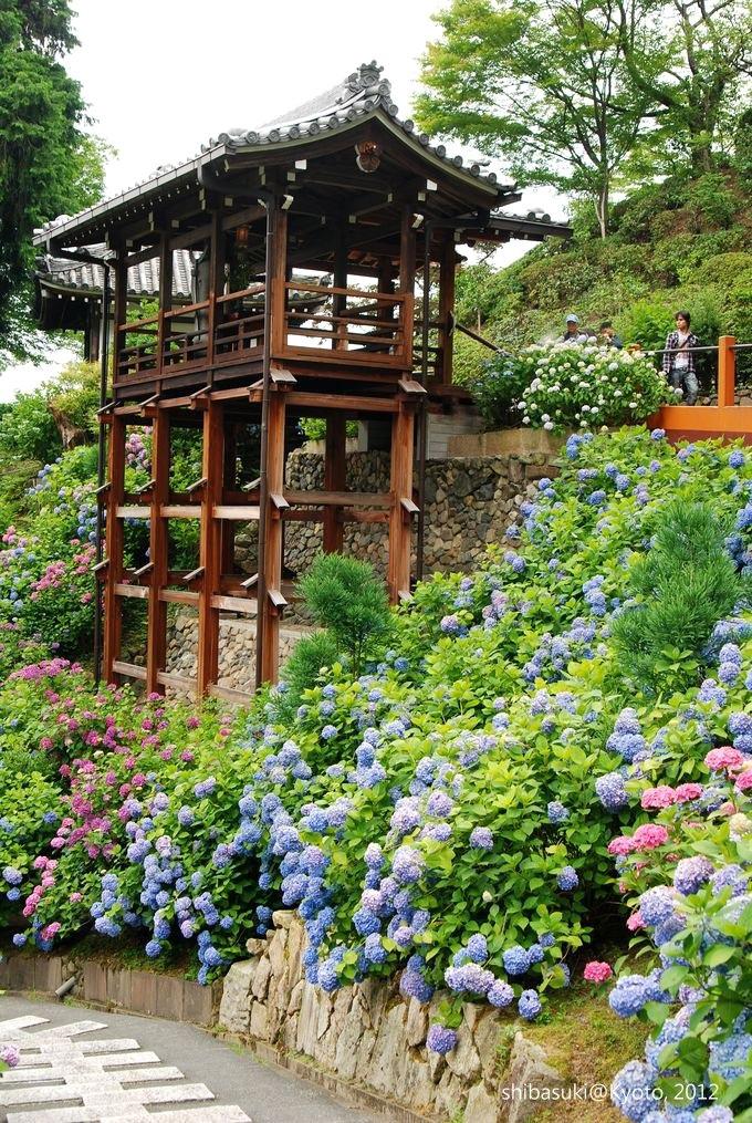 20120630_Kyoto-135_善峰寺_1.JPG