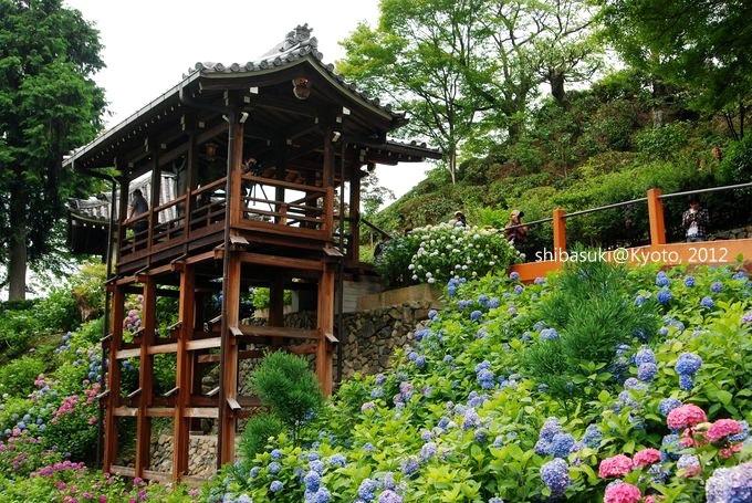 20120630_Kyoto-141_善峰寺_1.JPG