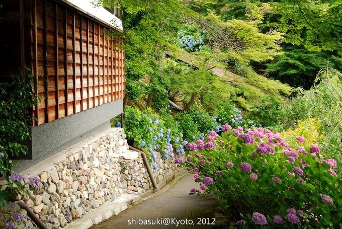 20120630_Kyoto-251_善峰寺_1.JPG