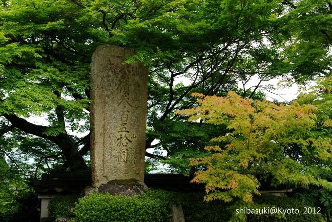 20120630_Kyoto-256_善峰寺_1.JPG