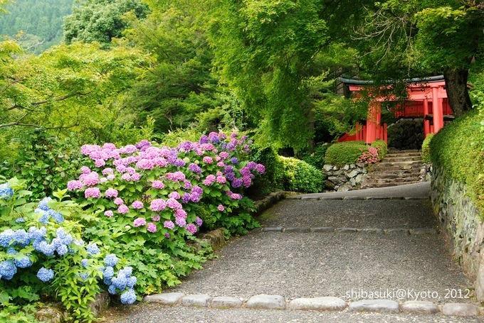 20120630_Kyoto-261_善峰寺_1.JPG