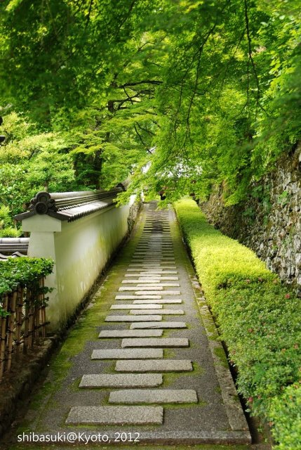 20120630_Kyoto-284_善峰寺_1.JPG