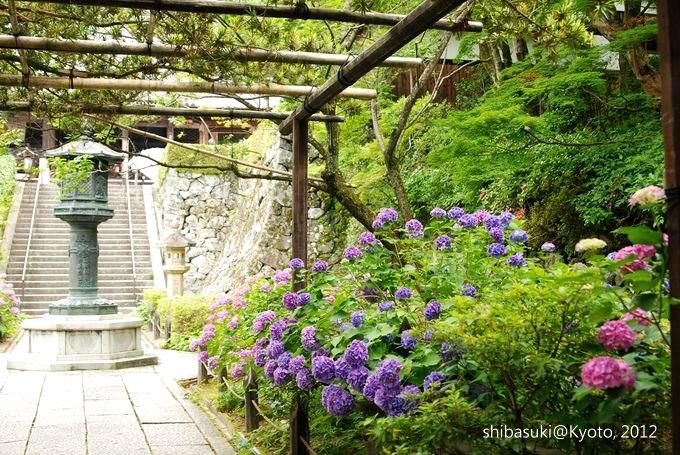 20120630_Kyoto-292_善峰寺_1.JPG