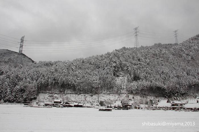 20130217_Kyoto-7_美山_1