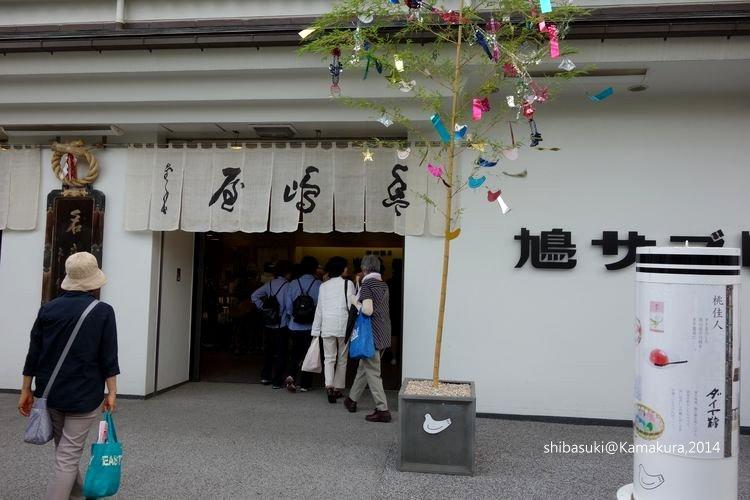20140616_Kamakura-166_1.JPG