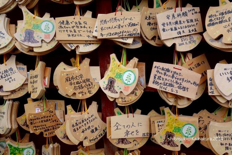 20140616_Kamakura-184_鶴岡八幡宮_1.JPG