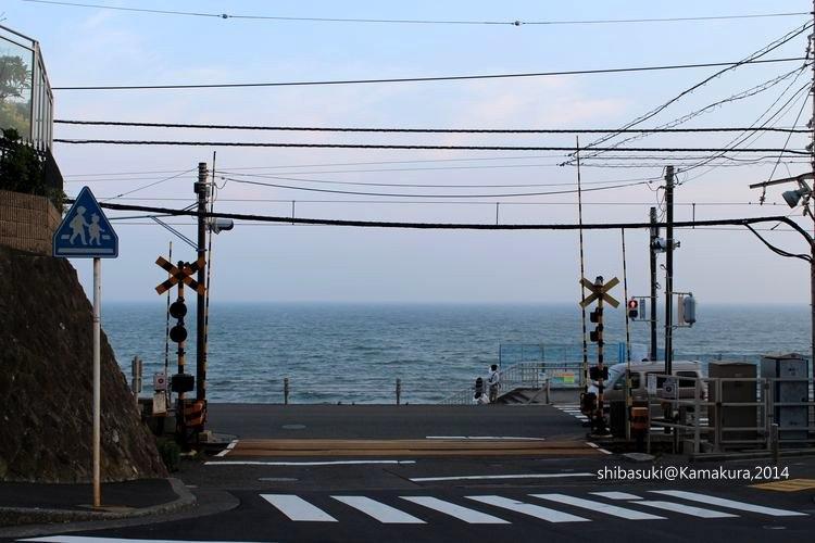 20140616_Kamakura-189_鎌倉高校前_1.JPG