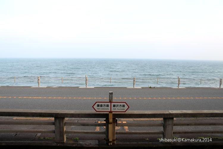 20140616_Kamakura-201_鎌倉高校前_1.JPG