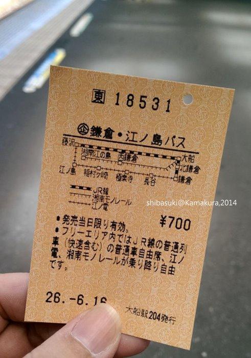 20140616_Kamakura-4_大船_1.jpg