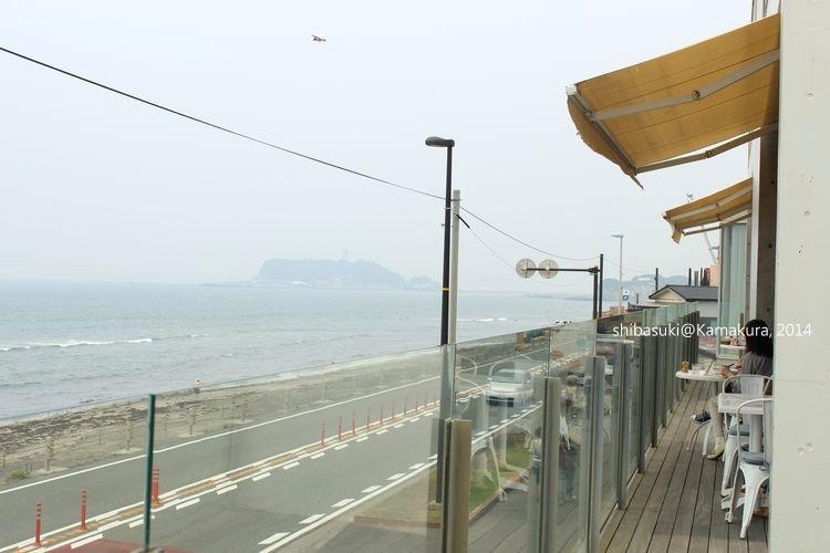 20140617_Kamakura-34_Bills_1