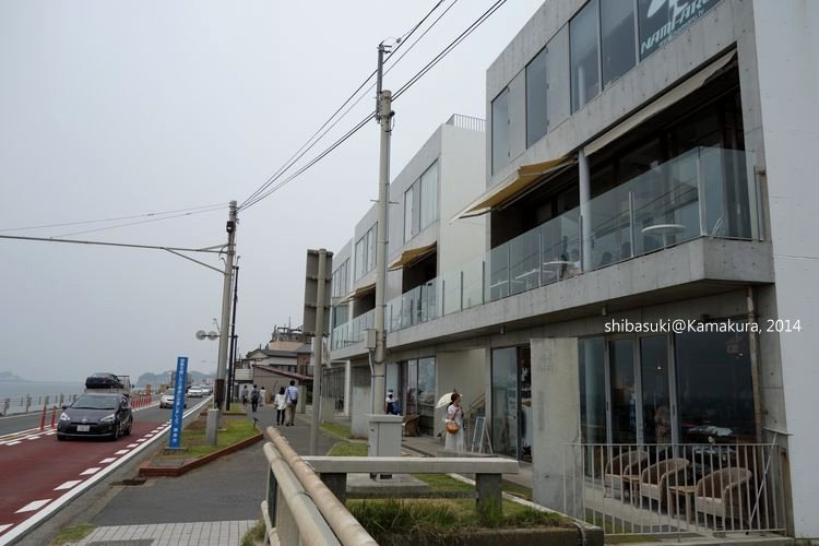 20140617_Kamakura-40_Bills_1