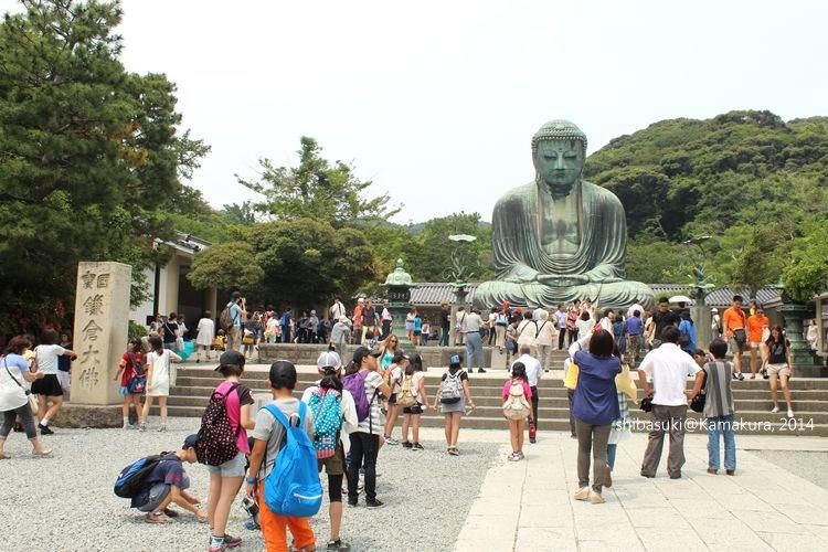 20140617_Kamakura-46_高德院大佛_1