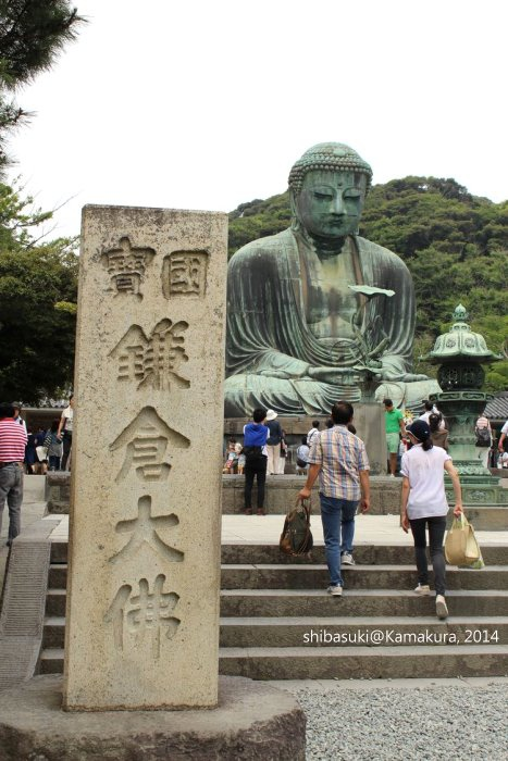 20140617_Kamakura-52_高德院大佛_1