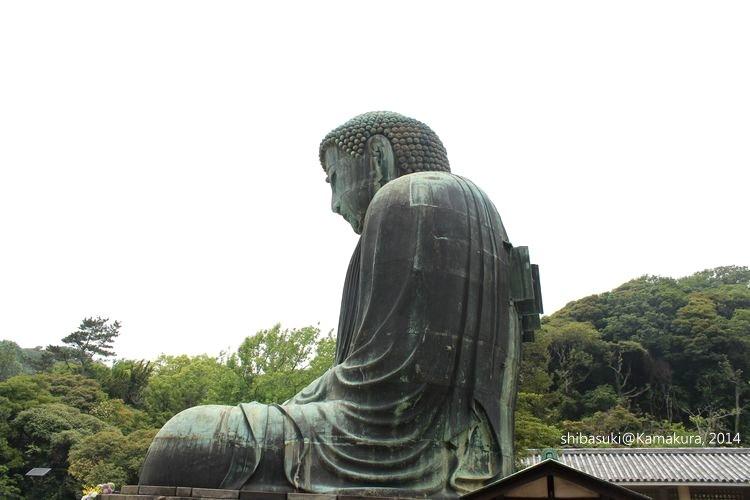 20140617_Kamakura-56_高德院大佛_1