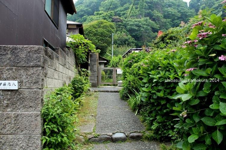 20140617_Kamakura-165_倒數第二次戀愛千明家_1