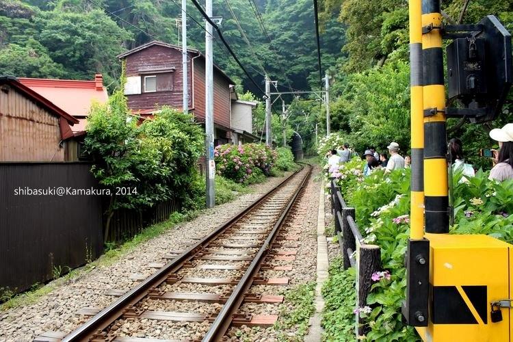 20140617_Kamakura-167_御靈神社_1