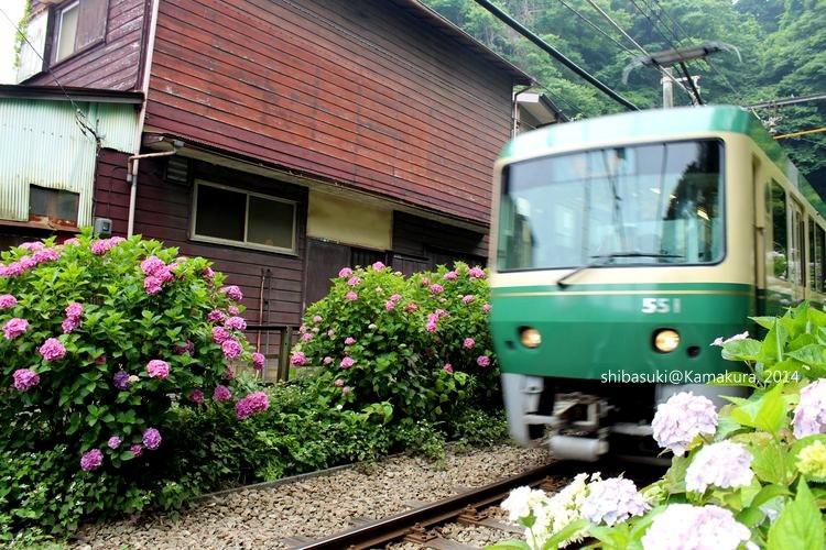 20140617_Kamakura-182_御靈神社_1