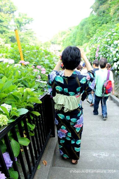 20140617_Kamakura-222_成就院_1
