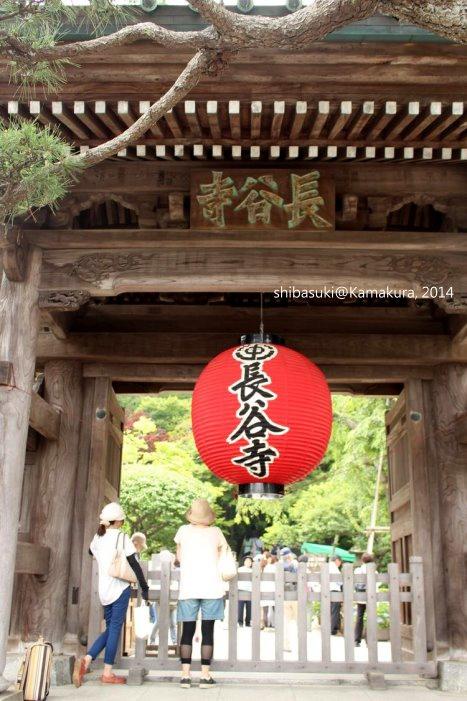 20140617_Kamakura-60_長谷寺_1