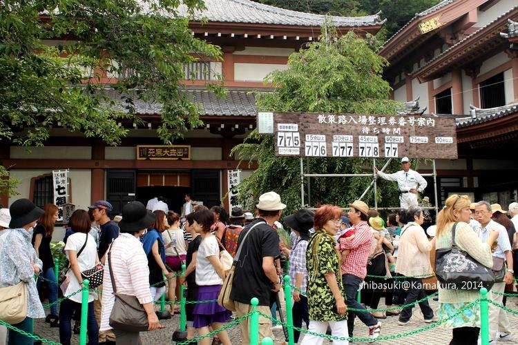 20140617_Kamakura-68_長谷寺_1
