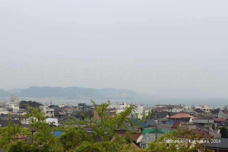 20140617_Kamakura-70_長谷寺_1