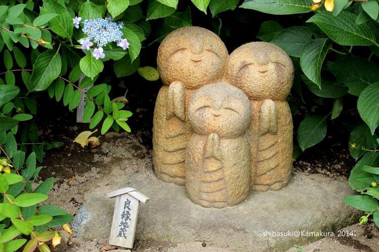 20140617_Kamakura-93_長谷寺_1