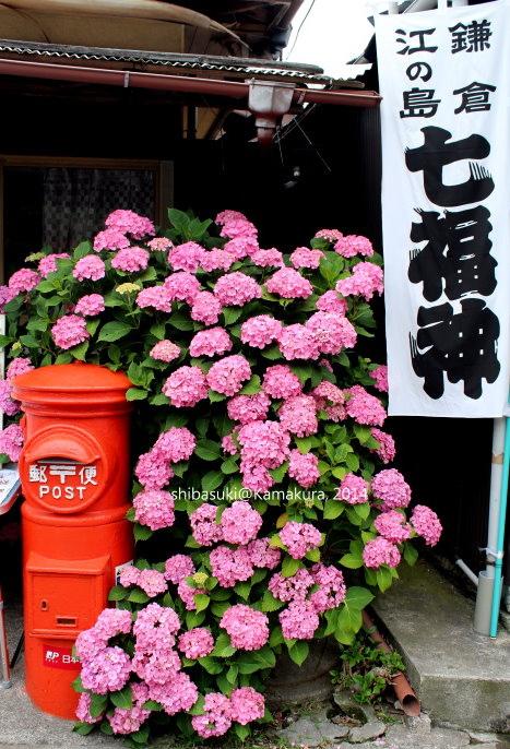 20140617_Kamakura-160_力餅家_1