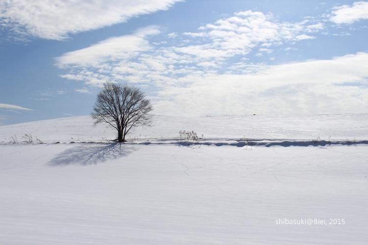 20150222_美瑛-117_s2.JPG