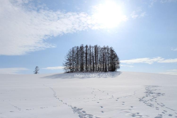 20150222_美瑛-239_Mild Seven Hills_s2.JPG