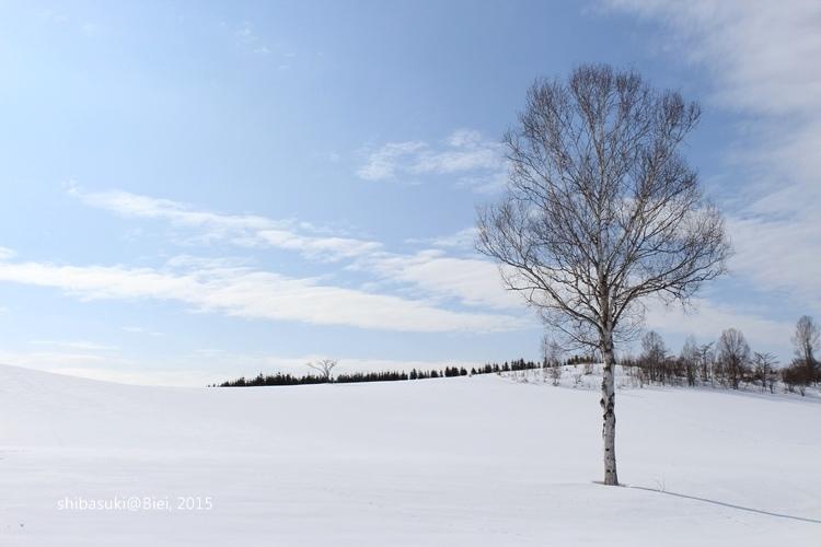 20150222_美瑛-244_Mild Seven Hills_s2.JPG