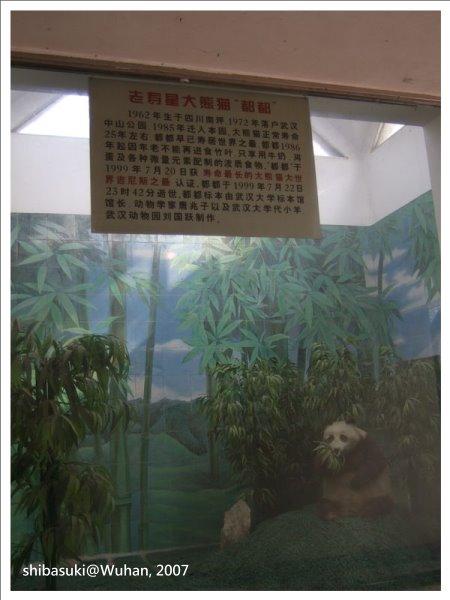 20071219_Wuhan-15_Zoo_1.JPG