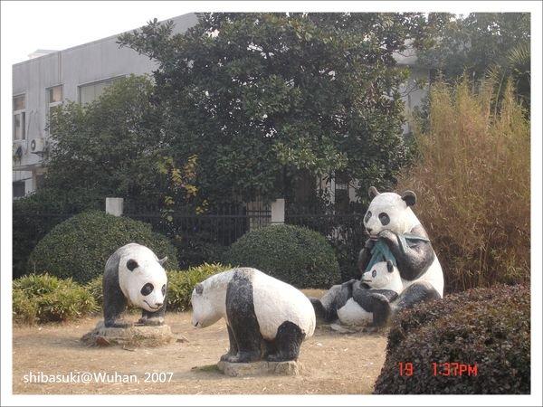 20071219_Wuhan-30_Zoo_1.JPG