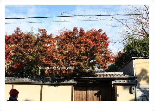 20081125_Kyoto-5.jpg