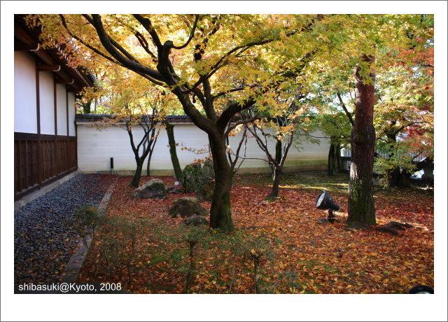 20081125_Kyoto-7_永觀堂.jpg