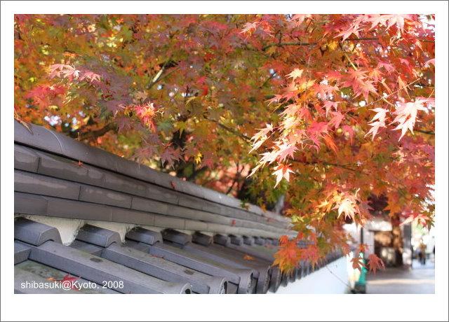 20081125_Kyoto-14_永觀堂.jpg