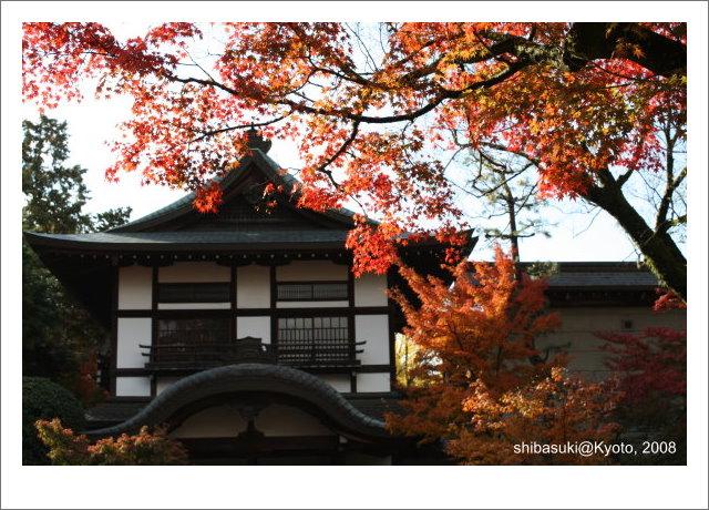 20081125_Kyoto-21_永觀堂.jpg