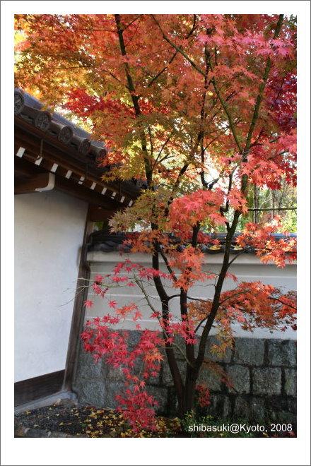 20081125_Kyoto-30_永觀堂.jpg