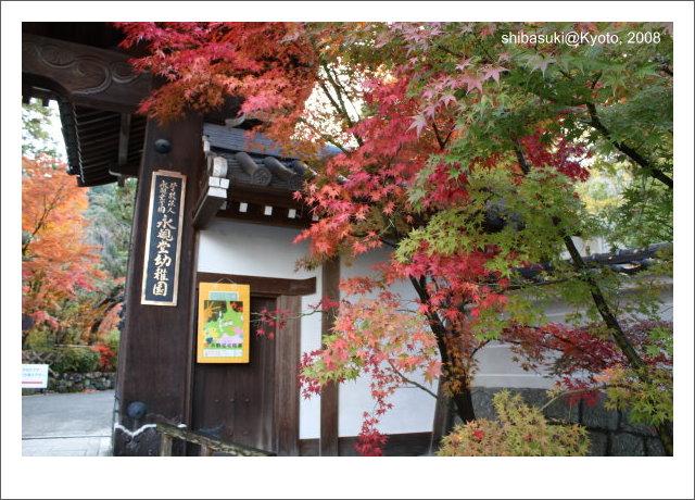 20081125_Kyoto-33_永觀堂.jpg