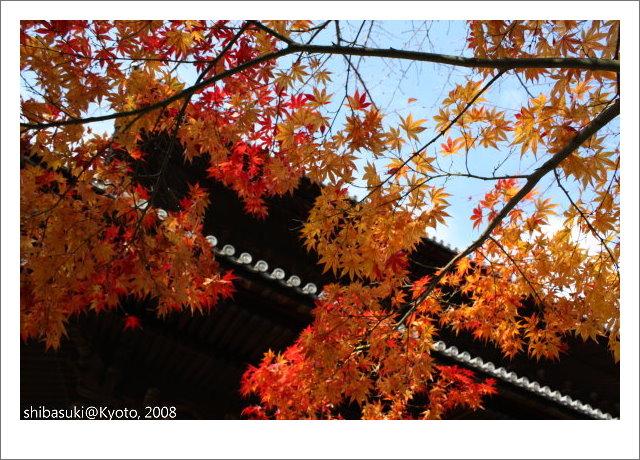 20081125_Kyoto-54_南禪寺.jpg