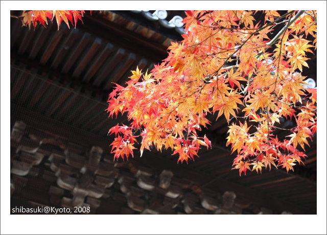 20081125_Kyoto-55_南禪寺.jpg
