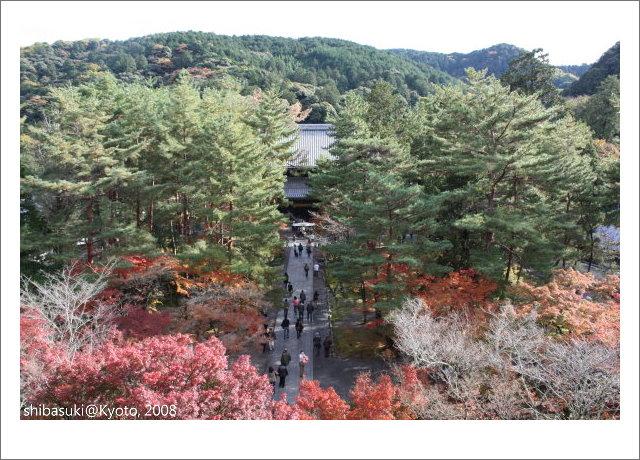 20081125_Kyoto-69_南禪寺.jpg