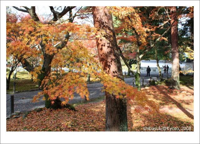 20081125_Kyoto-87_南禪寺.jpg