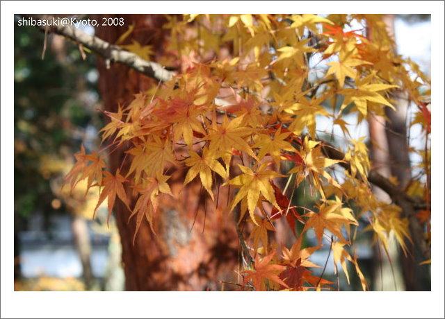 20081125_Kyoto-93_南禪寺.jpg